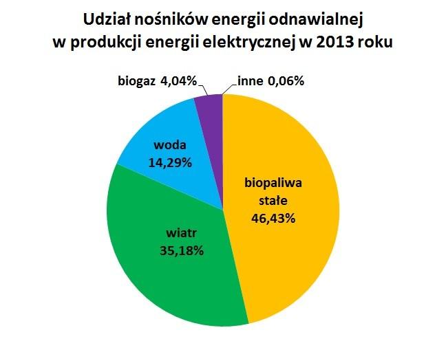 Udział nośników energii odnawialnej w produkcji energii elektrycznej w 2013 roku